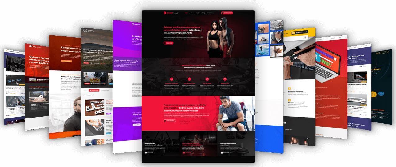 website design company bellingham